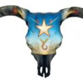 Texas Artlaw Boyd Elder Mounts Skull Art Exhibit in Austin